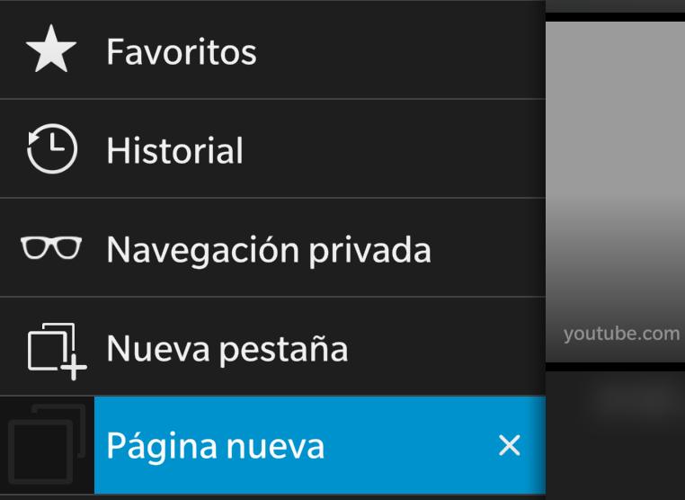 navegacion_privada